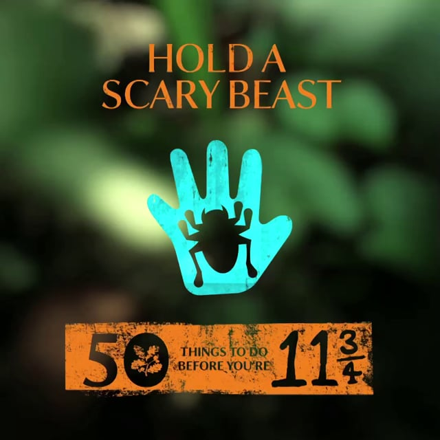 NATIONAL TRUST #50THINGS - HOLD A SCARY BEAST