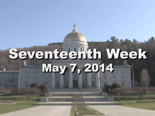 Under The Golden Dome 2014 Week 17