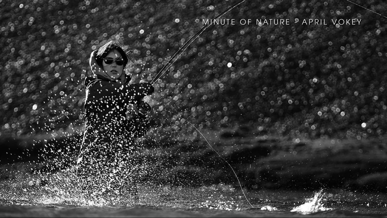 Minute of Nature - April Vokey