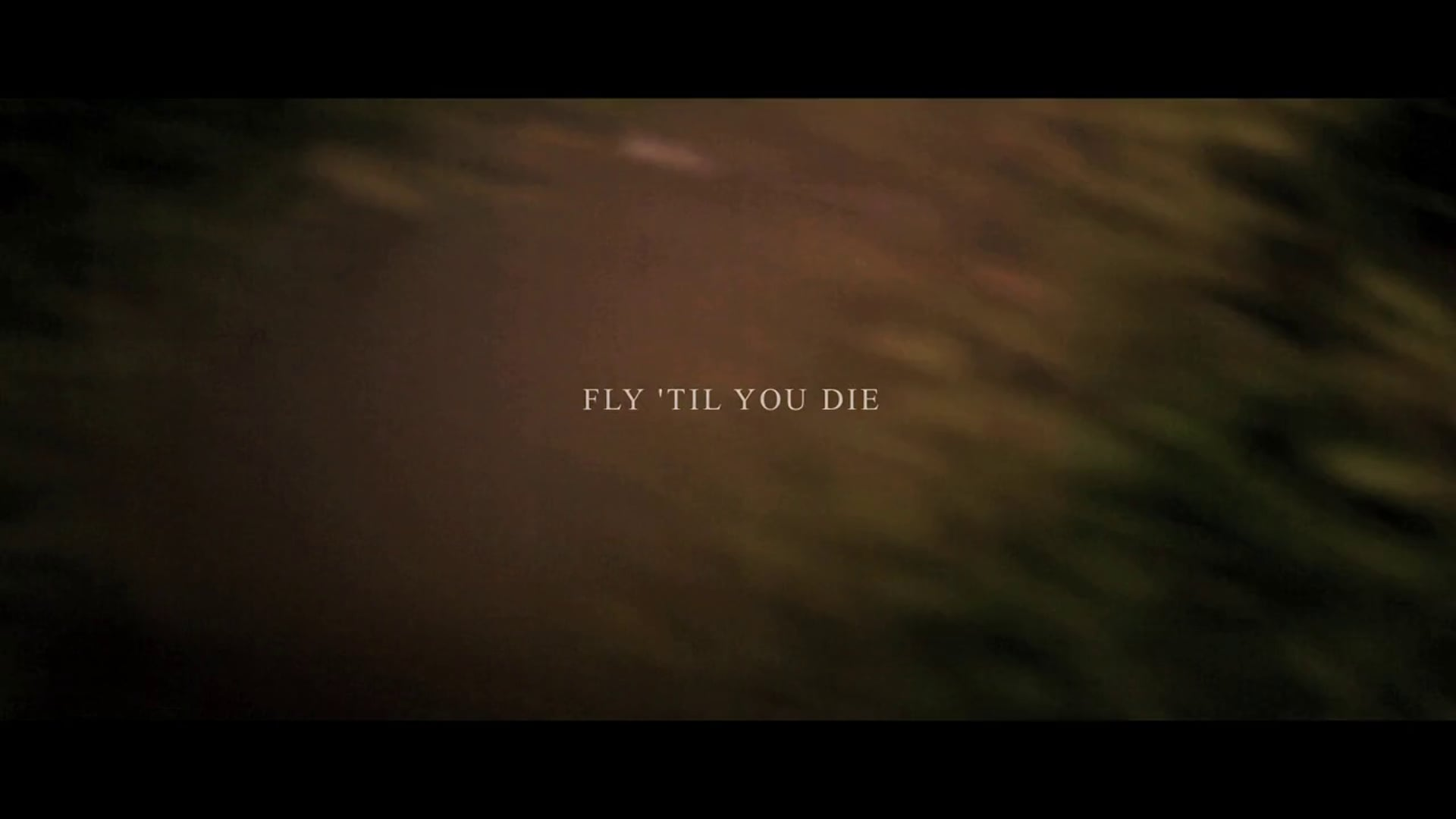 Fly 'Til You Die (Commission by Bacardi Ltd.)