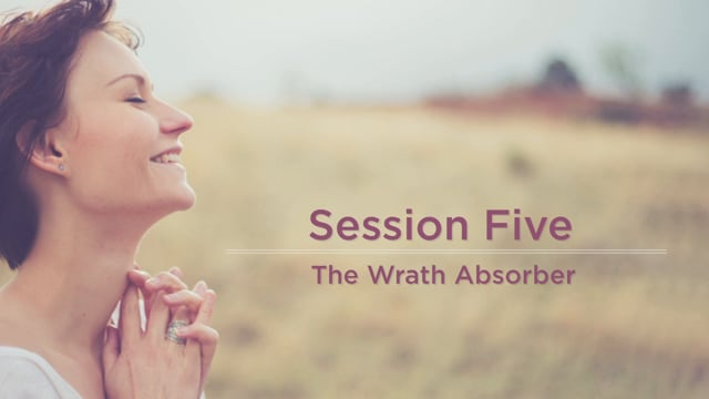 Approved: The Wrath Absorber