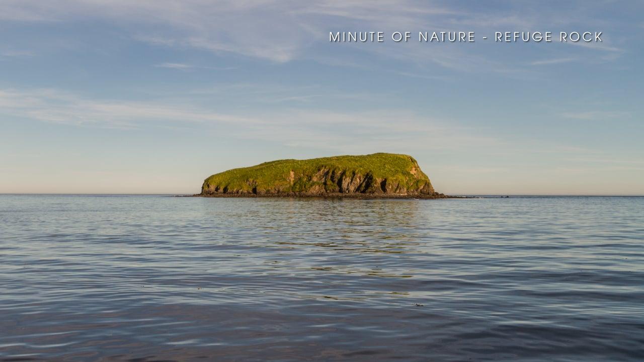 Minute of Nature - Refuge Rock