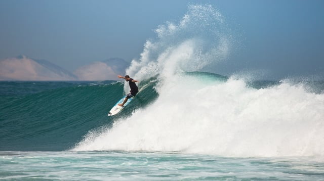 Torrey Meister | Chapter 5 | Las Palmeras from O'Neill