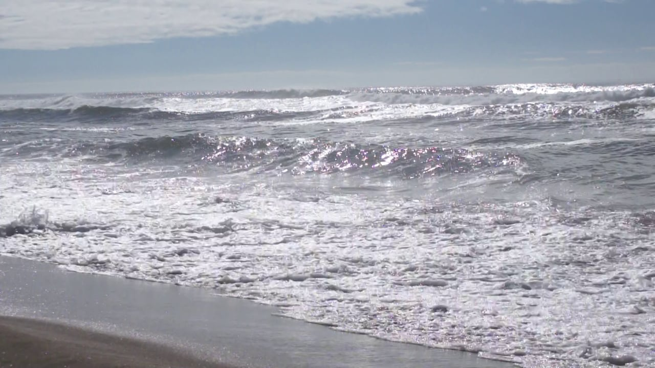 A short little video shot at Horsfall Beach near Coos Bay/North Bend on the Southern Oregon Coast