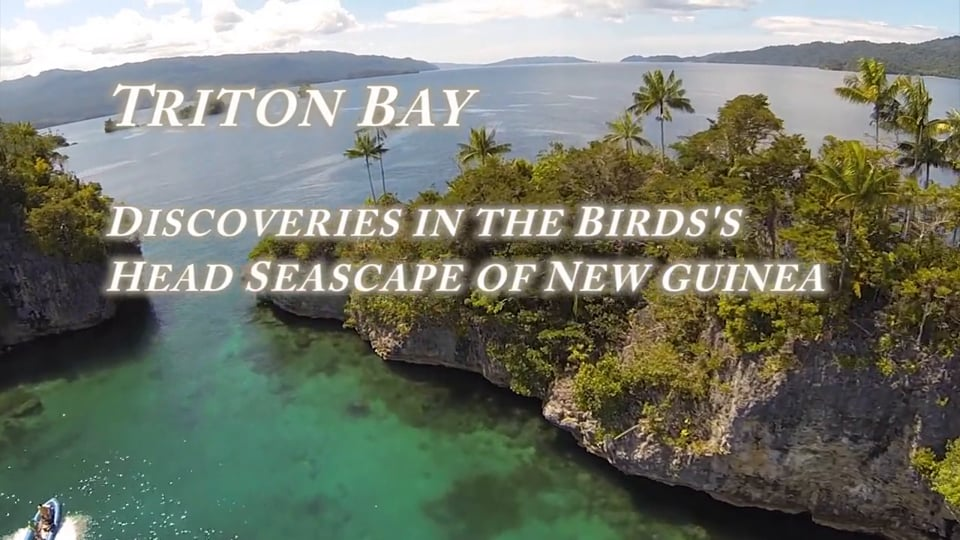 Triton Bay - Discoveries in the Bird's Head Seascape of New Guinea