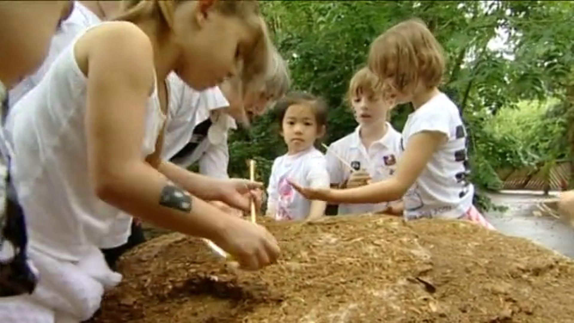 DoE Growing Schools 'Fossils'
