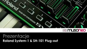 Roland SH-101 Plug-out