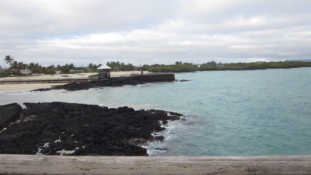 Beach tower view, Isabela Island, Galapagos