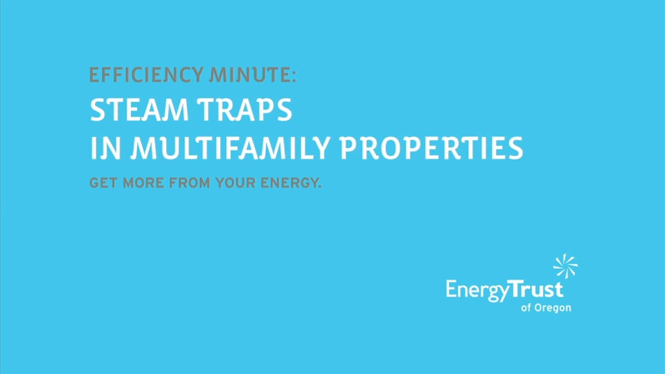 Thumbnail of video for Efficiency Minute: Steam Traps