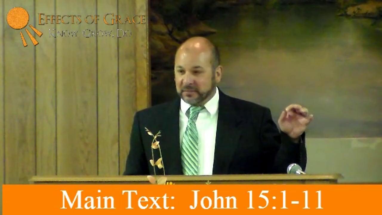 Why Should I Abide In Jesus? John 15:1-11