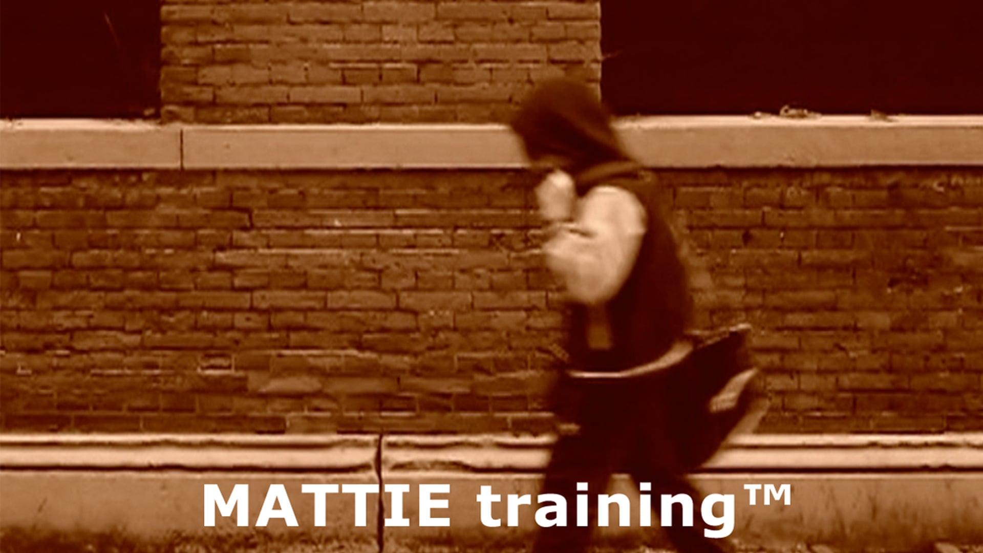 Mattie training bij boksschool van 't Hoff