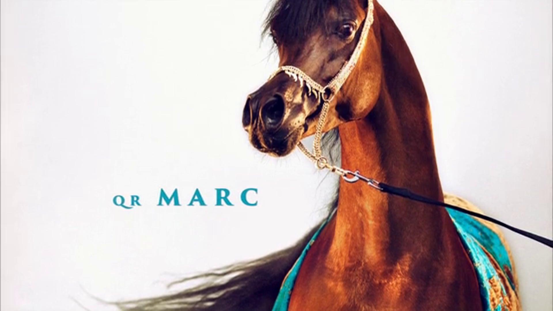 QR Marc