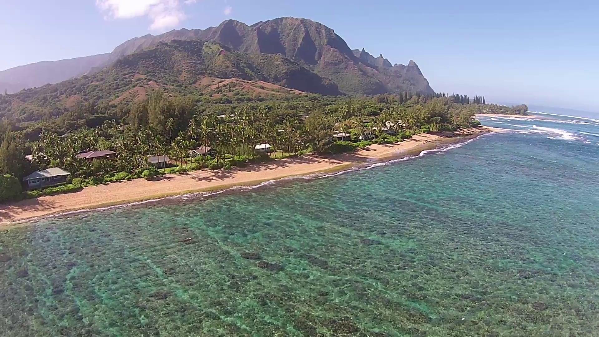 Beach Life - North Shore Kauai