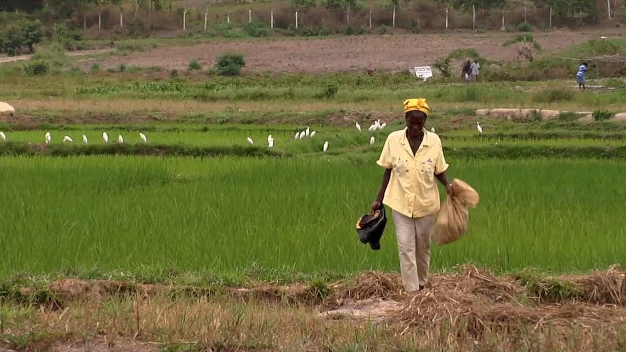 Trade Works: boosting livelihoods, building futures