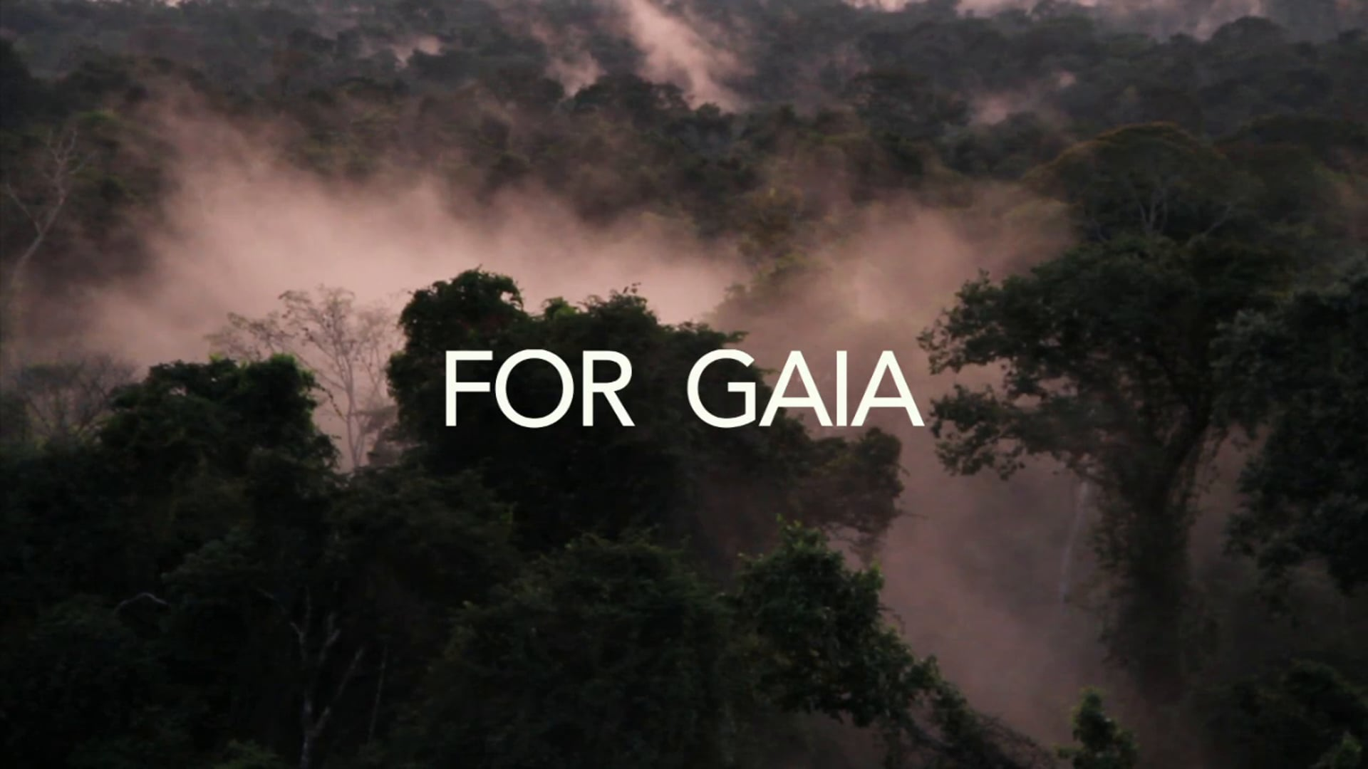 For Gaia