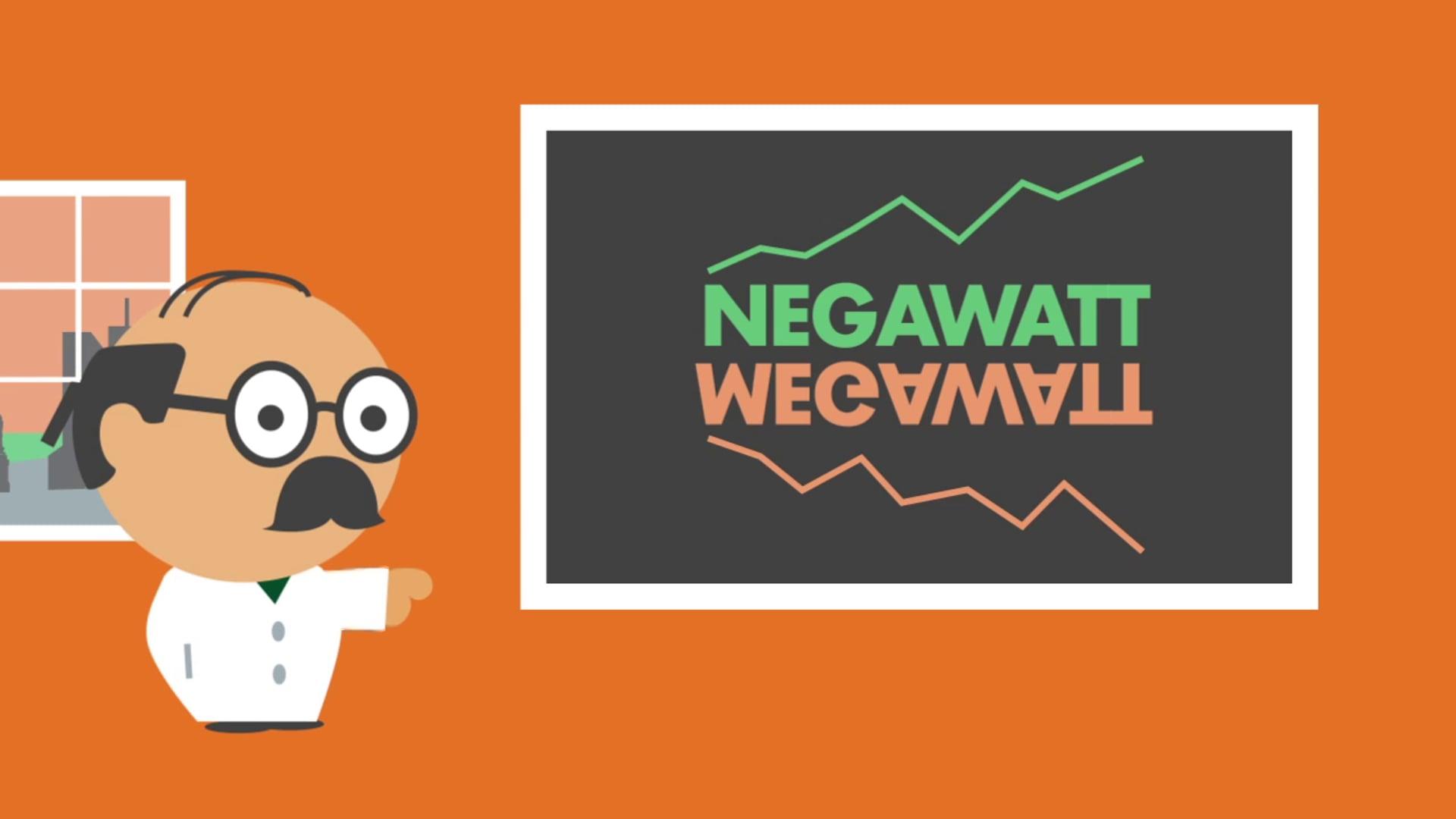 """Green Network """"Megawattora"""""""