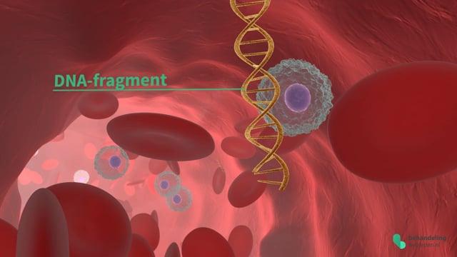 Prenatale Testen - NIPT (niet-invasieve prenatale test)