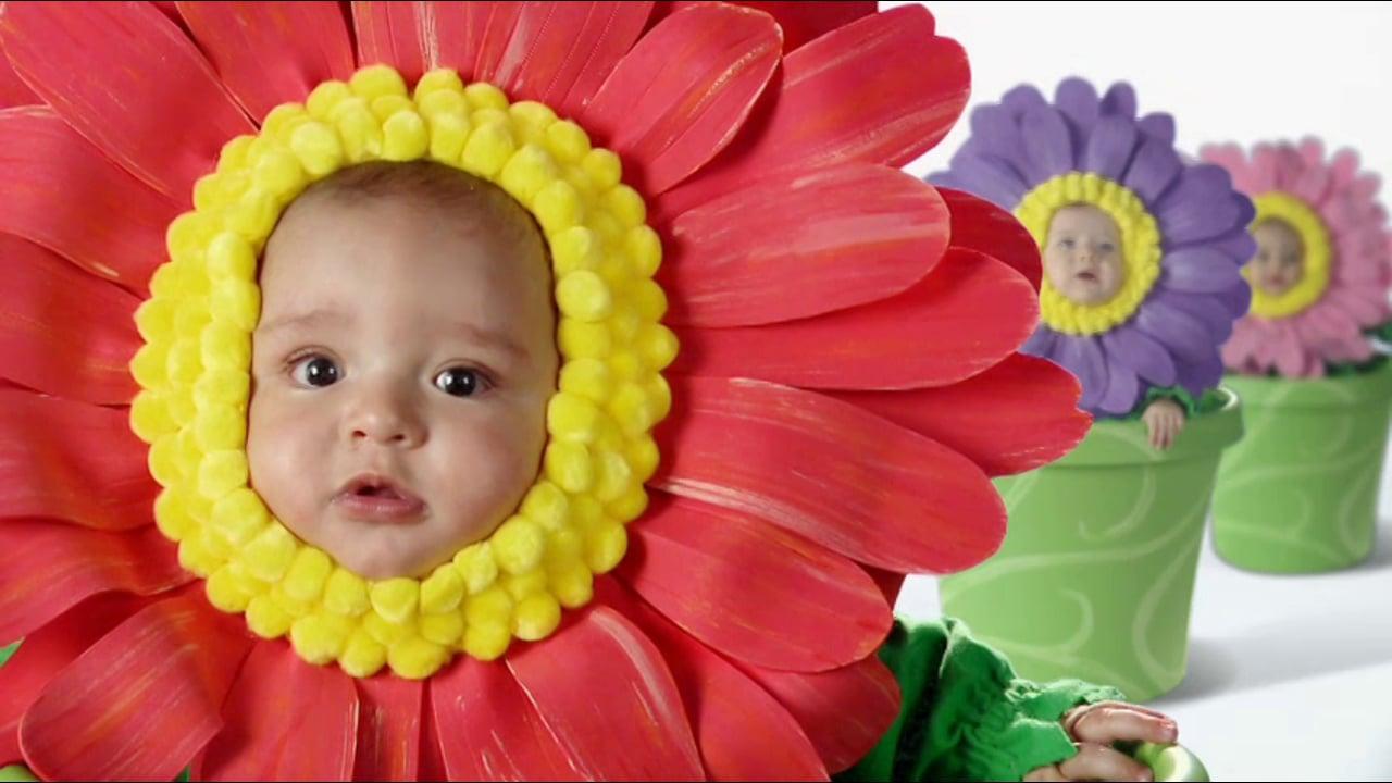 Lovelace - Labor of Love - Flower Pot Babies