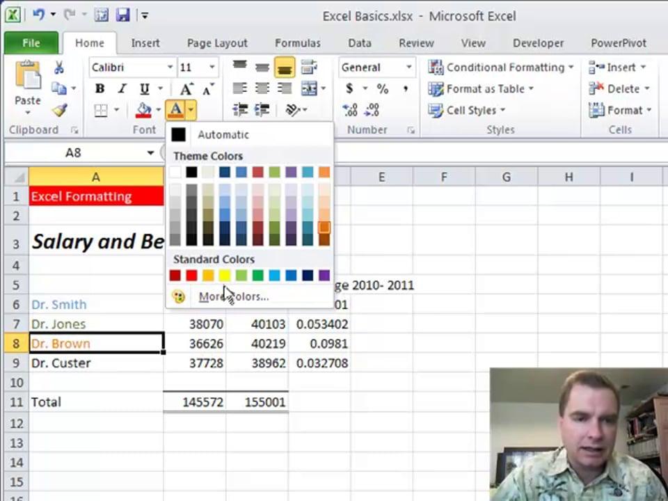 Excel Video 212 Format Cells, Part 2