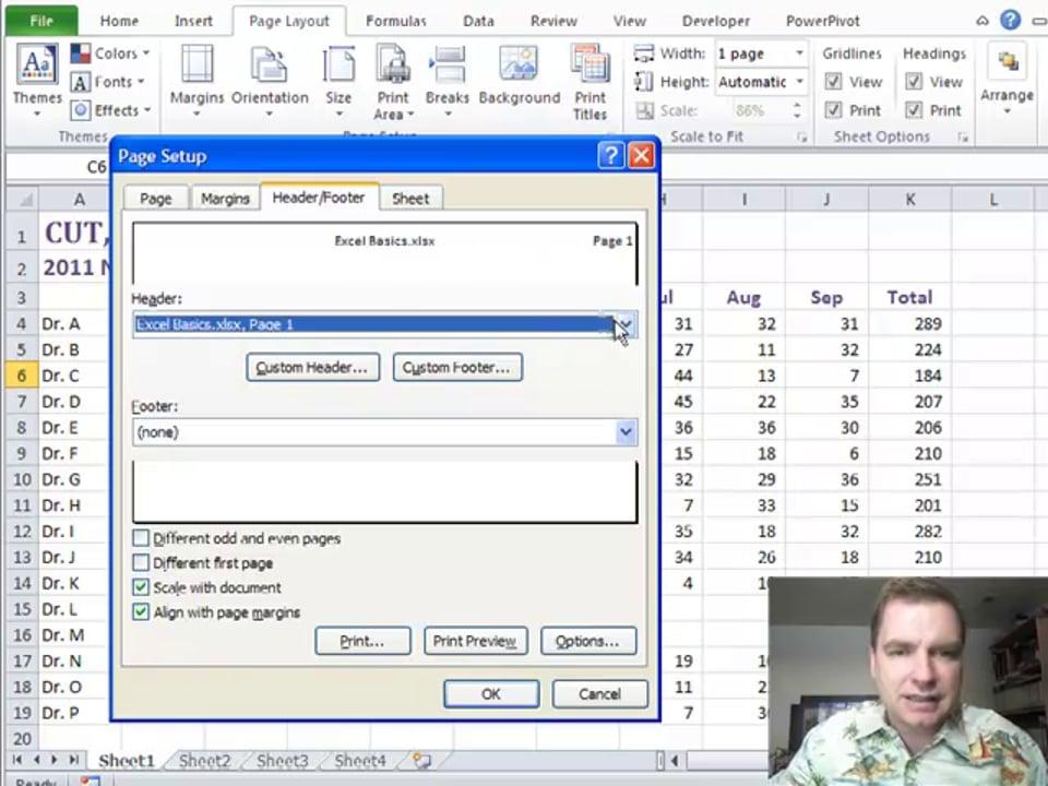 Excel Video 227 Custom Headers and Footers