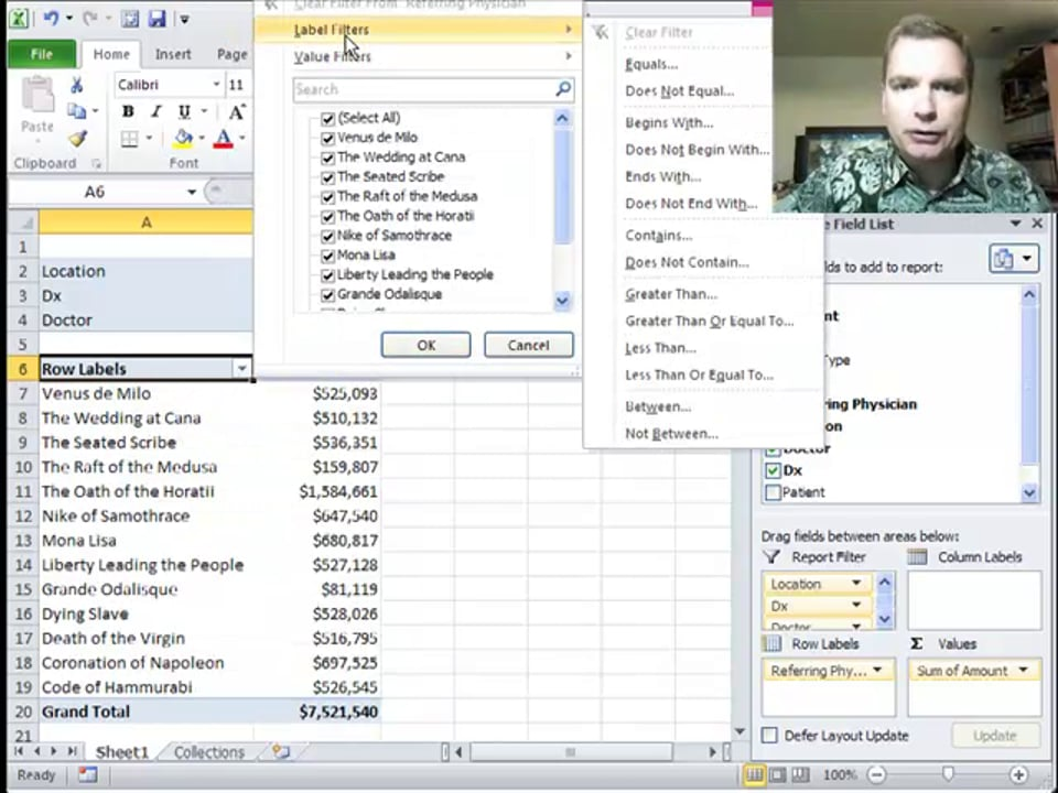 Excel Video 285 Label Filters