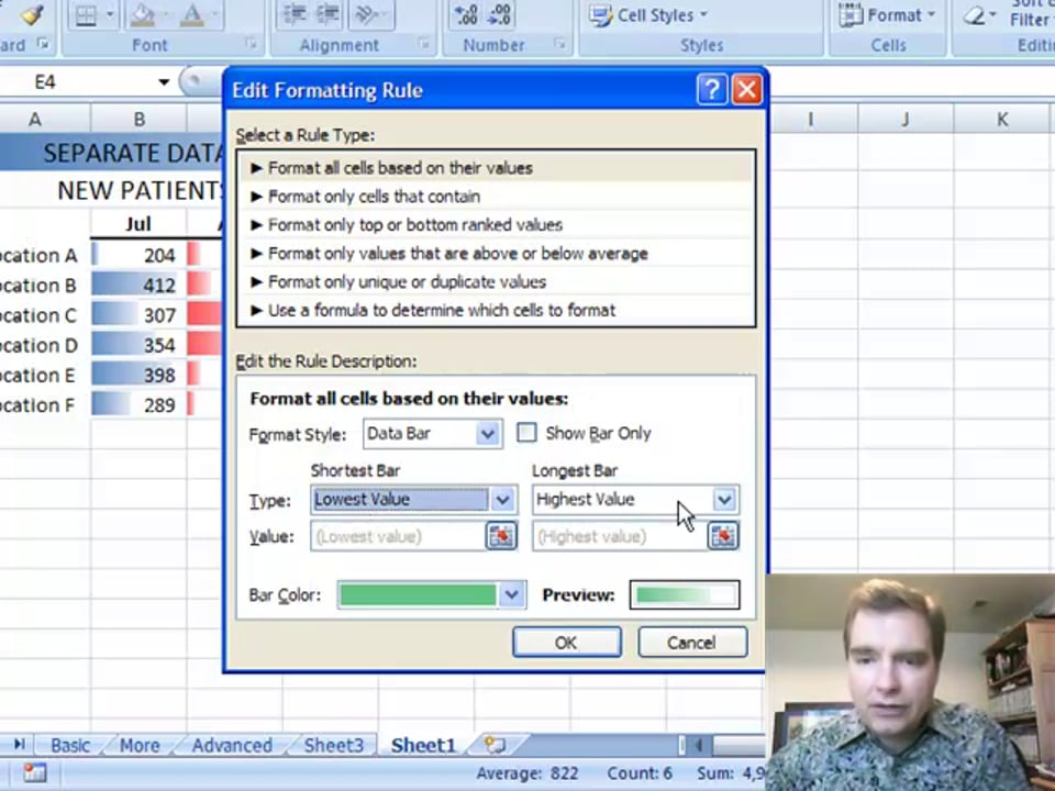 Excel Video 48 Data Bars