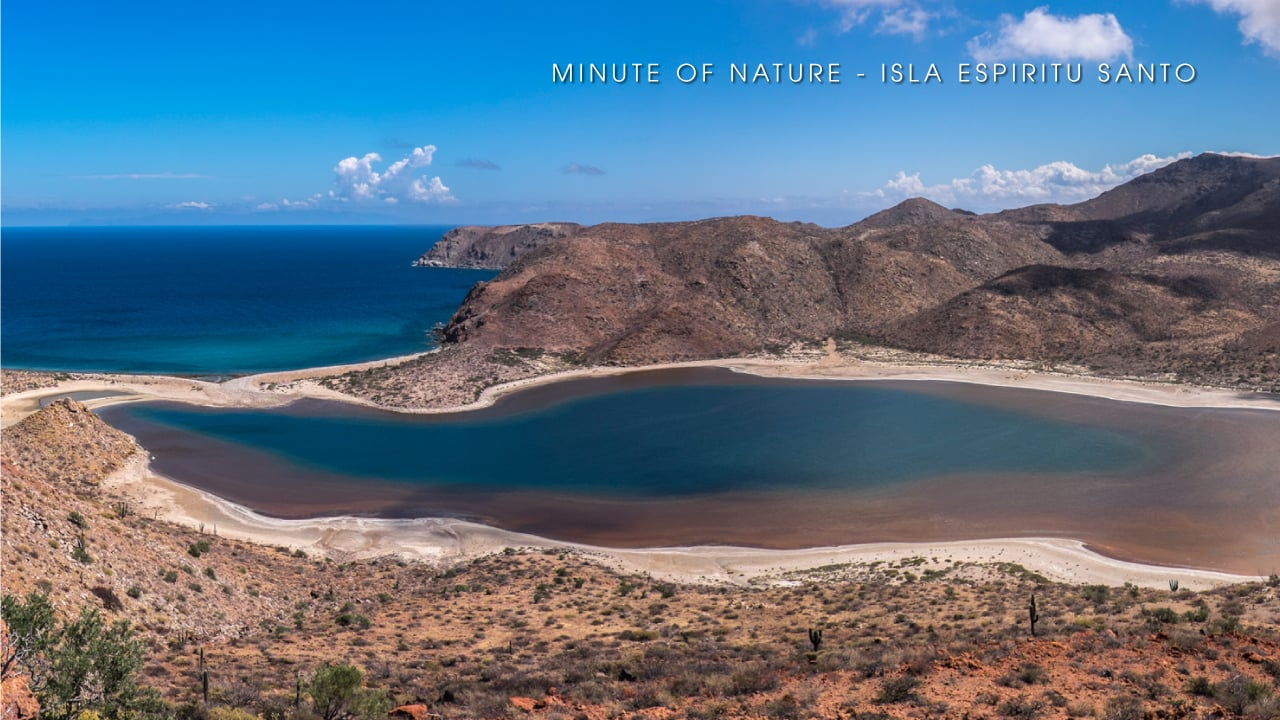 Minute of Nature - Isla Espiritu Santo