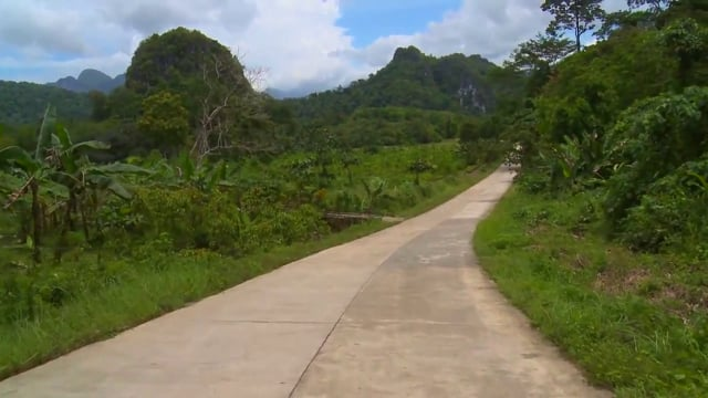 Cycle Through Tropical Scenery- Great Bike ride In Tropical Landscapes