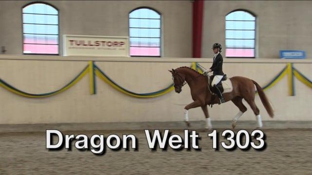 Dragon Welt 1303