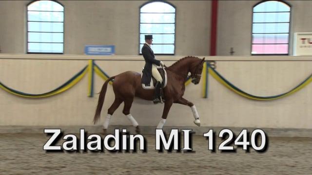 Zaladin MI 1240
