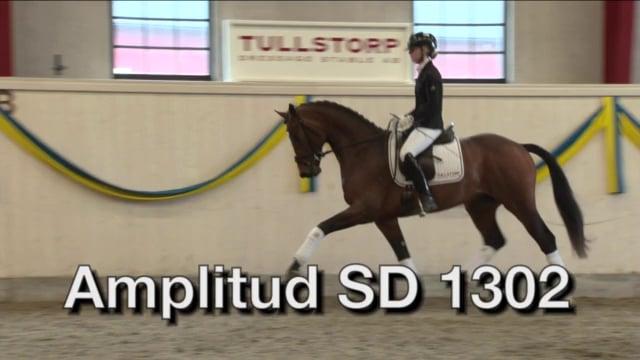 Amplitud SD 1302