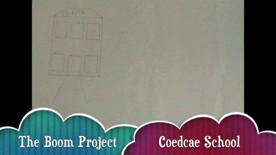 Coedcae Boom Project