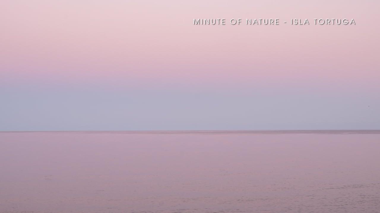 Minute of Nature - Isla Tortuga