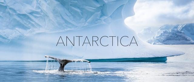 20 days in Antarctica