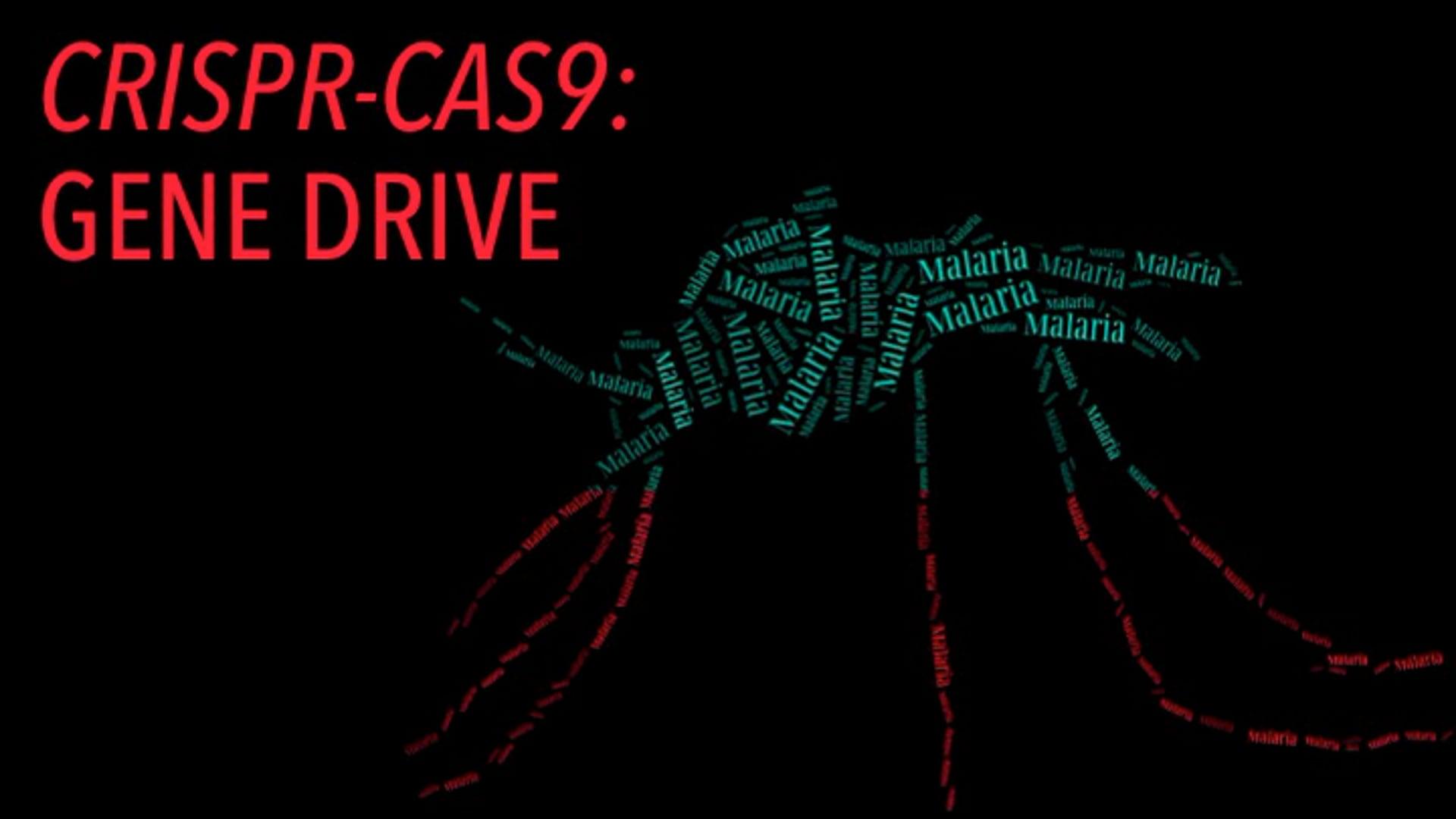 CRISPR-Cas9: Gene Drives