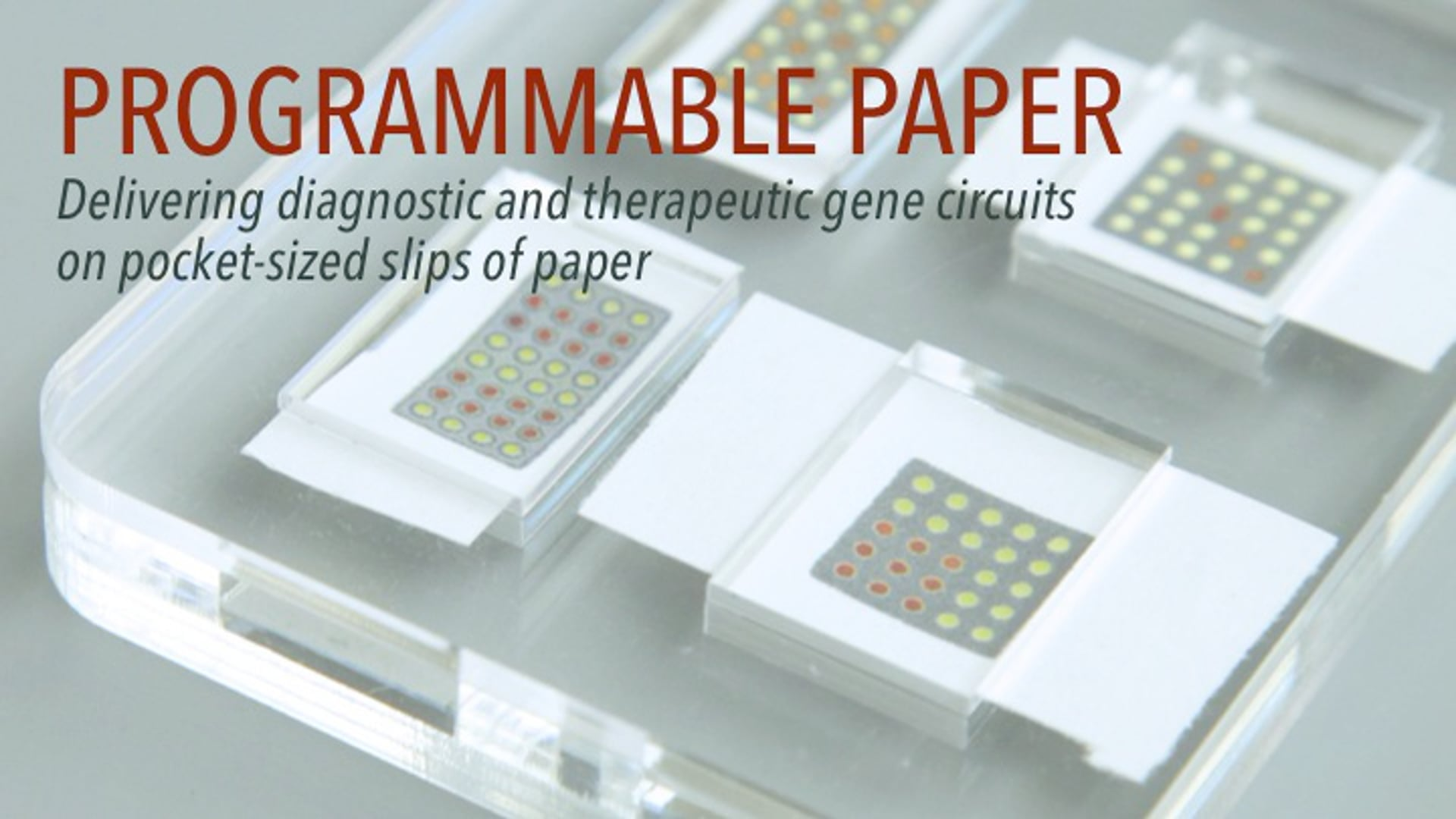 Programmable Paper: Advances in Synthetic Biology