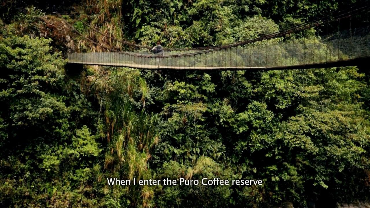 Puro Coffee Ecuador Rainforest Reserve