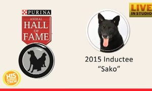 Heroic Dog Inducted into Hall of Fame
