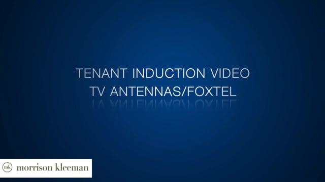 TV Antennas-Foxtel