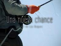 Una nueva chance