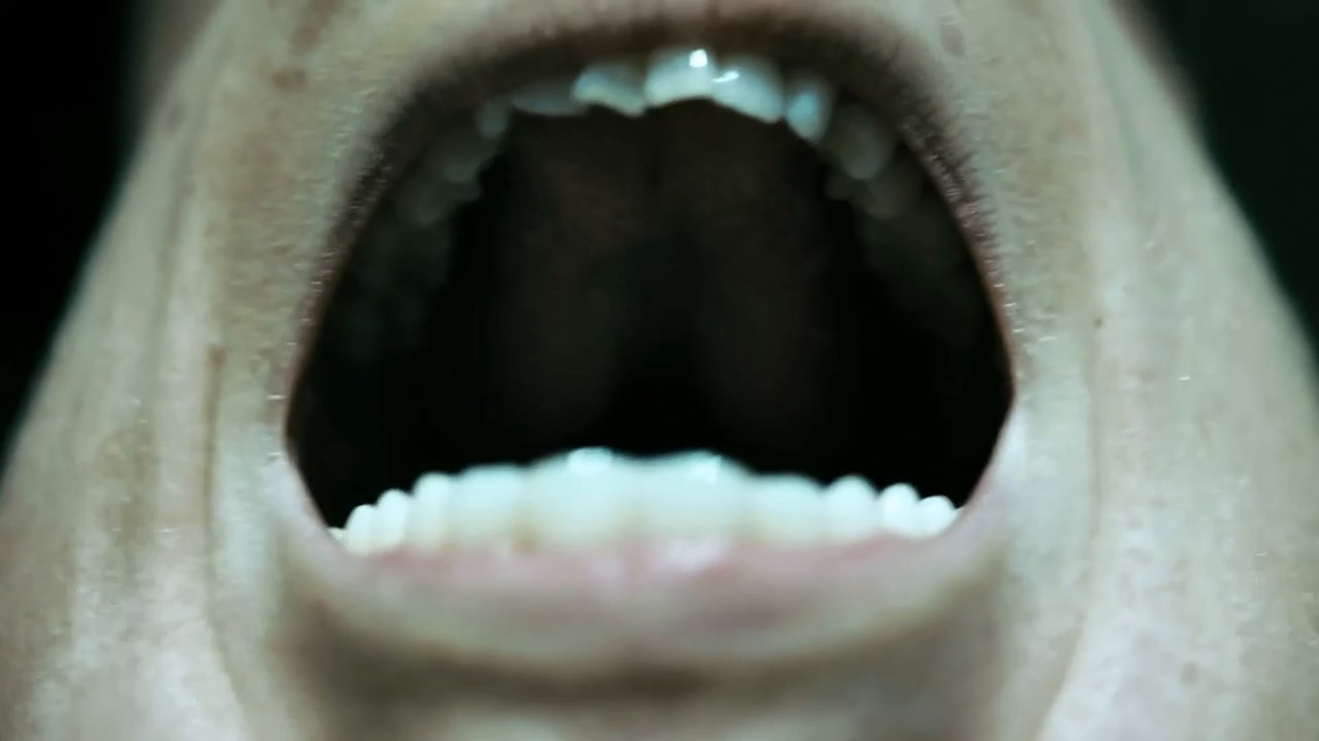 INSTINCT Trailer