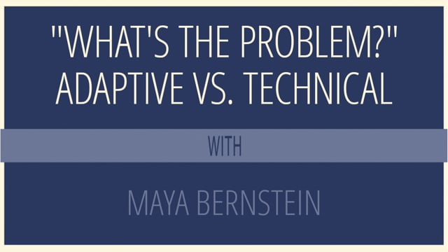 """""""What's the Problem?"""" Adaptive vs. Technical"""
