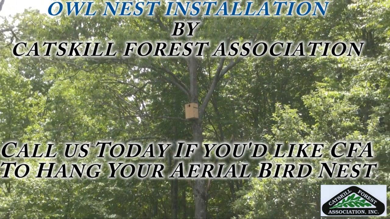 OWL BOX AERIAL INSTALLATION