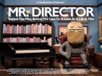 Mr. Director
