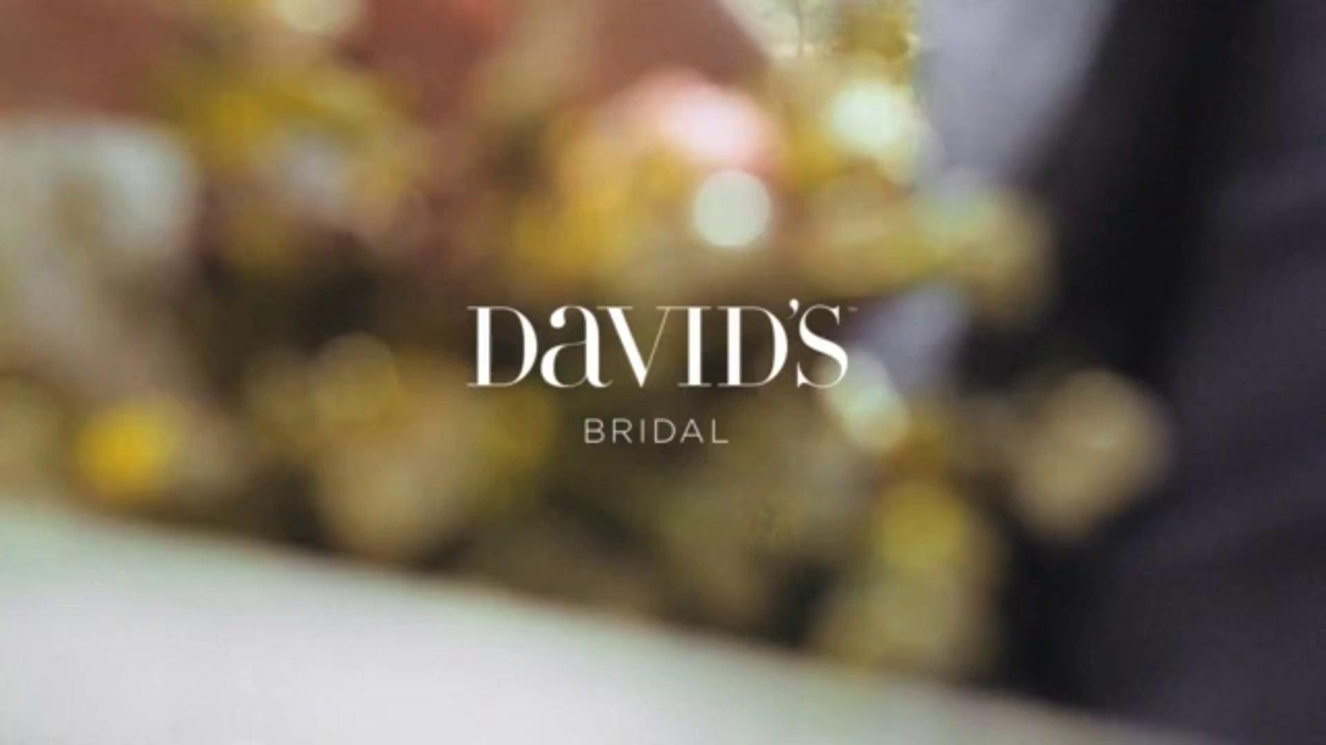 David's Bridal Spring 2015 - Serge Leblon