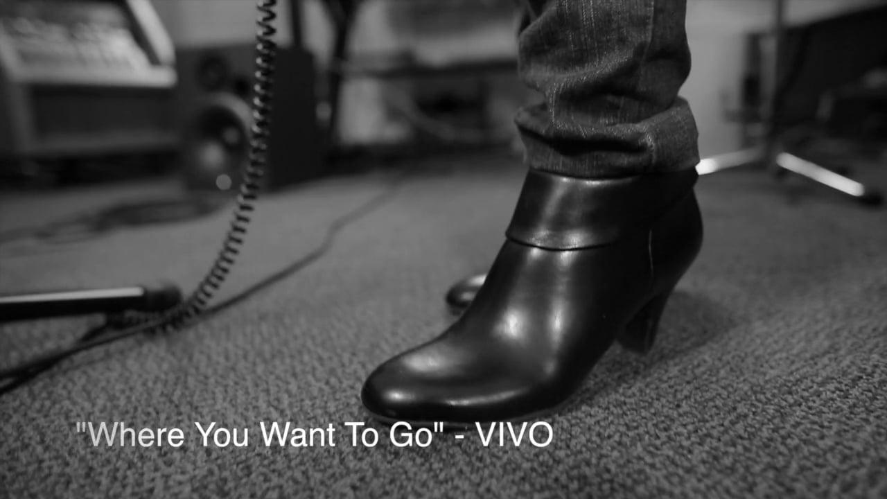 ViVo_VideoBW