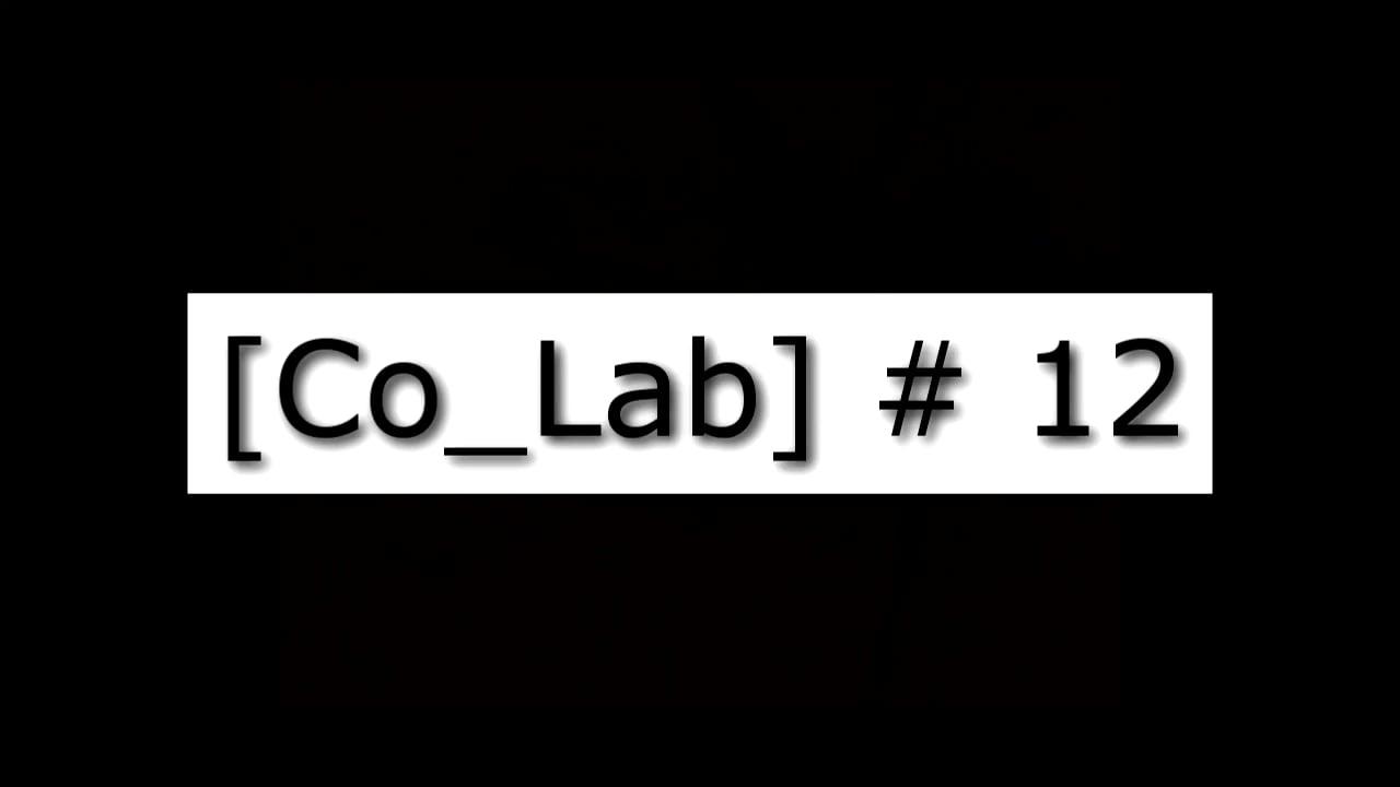 [Co_Lab] #12