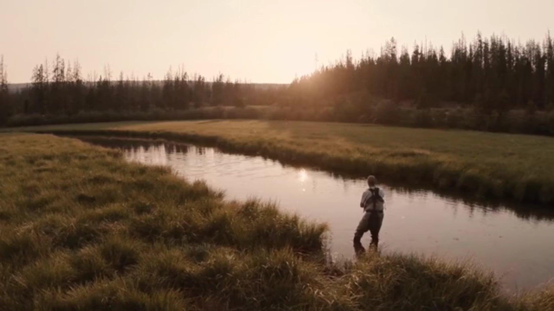 Twede Films - Featured Work
