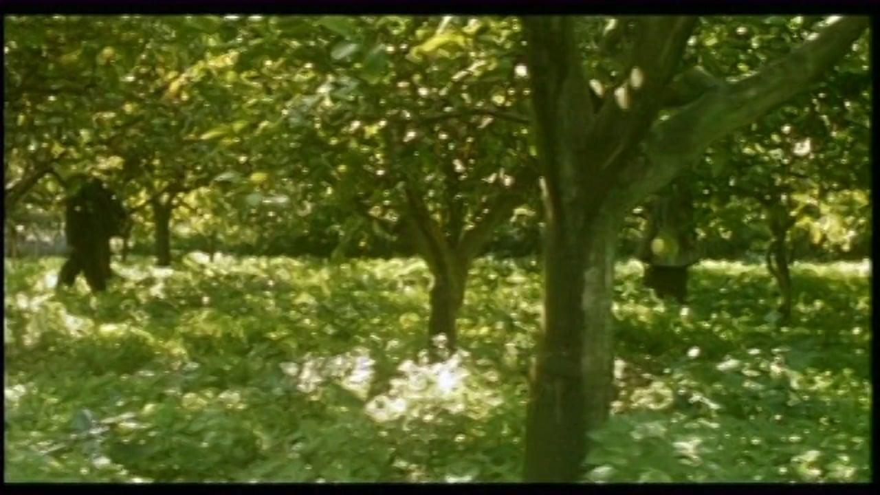 Shoreline Trailer-Vmeo