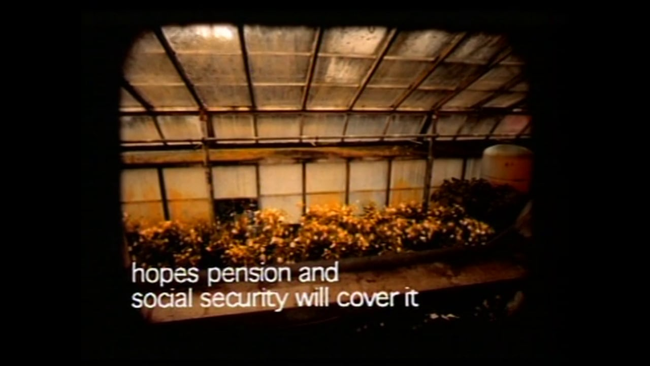 Greenhouse-Vimeo 4 3